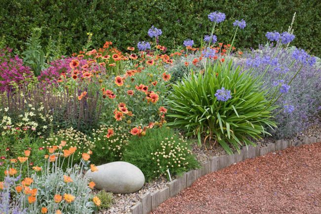 736 best images about perennials on pinterest gardens for Perennial plant combination ideas