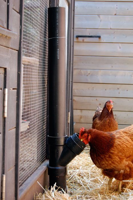 DYI No Spill Chicken Feeder | The Art of Doing Stuff #backyardchickens #poultryhttp://www.theartofdoingstuff.com/diy-no-spill-chicken-feeder/