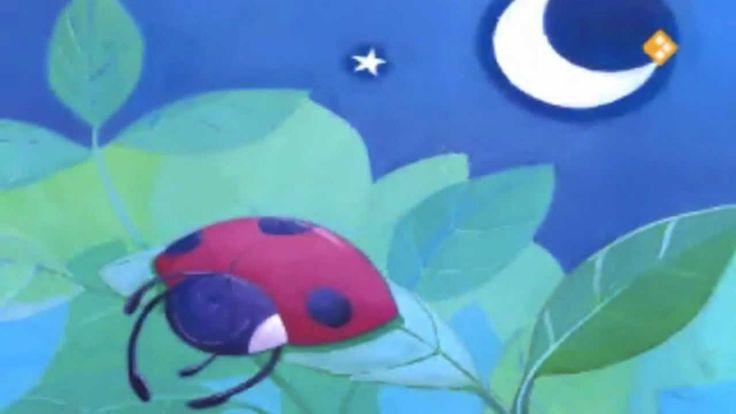 Het luie lieveheersbeestje. Dit is het verhaal van een héél lui lieveheersbeestje. Het liefst sliep ze de hele dag en nacht. Ze wist niet hoe ze vliegen moest. Op een dag wilde ze ergens anders slapen, maar wat moet je doen als je niet kunt vliegen?