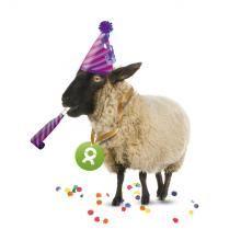 OxfamUnverpackt Geschenk Schaf (Neujahr)