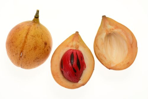 nutmeg and natural source Phytochemistry and pharmacognosy – natural products as sources of apices,dyes and cosmetics – pdi mascio nutmeg.