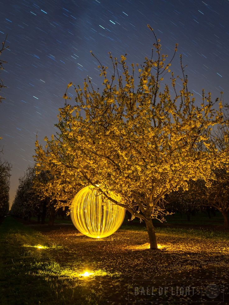 Denis Smith, Ball of Light Project, 2010
