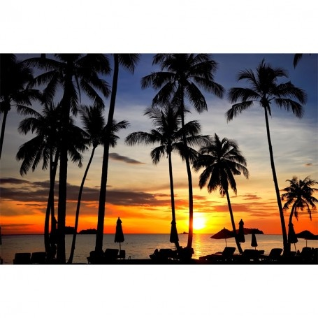 Coconut palms on sandy beach in tropical sunset wall mural for Beach sunset mural