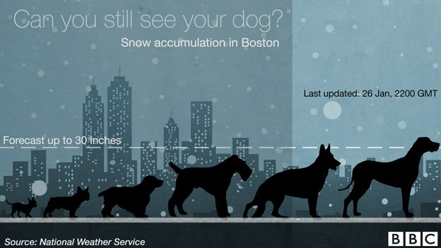 US blizzard: Charting the snow depth – using six dogs