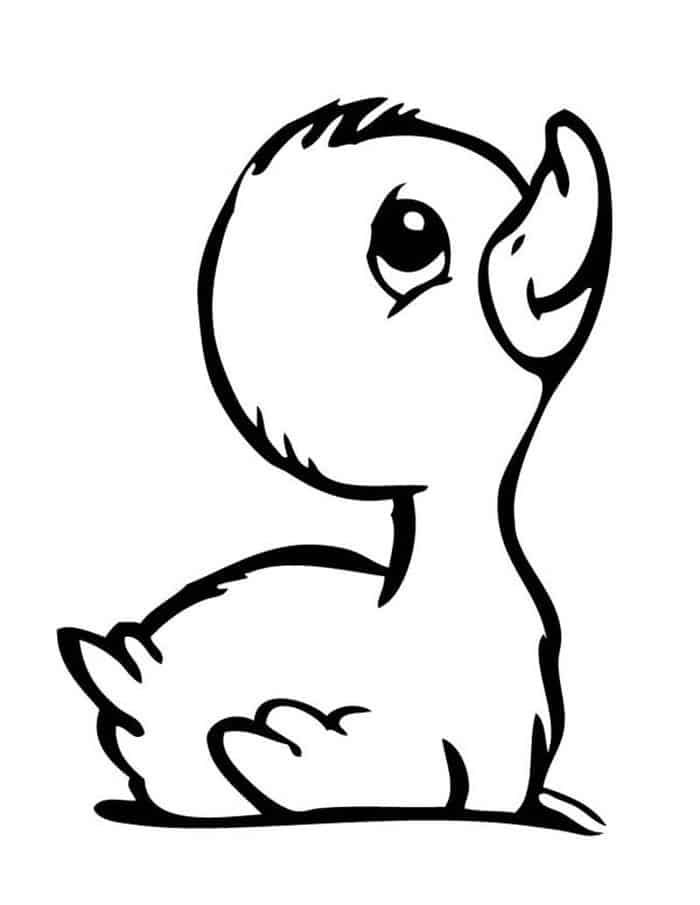 Cute Duck Coloring Pages Animal Coloring Pages Baby Animal Drawings Boy Cartoon Drawing