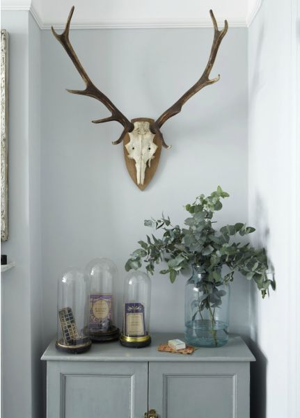 In honor of the deer hunting season, we bring you antlers and a lodge style you'll want to have in your home!