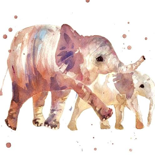 elephants EEEP
