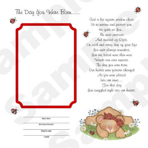 24 BABY SHOWER GIFT PREMADE LADYBUG BEAR FIRST YEAR ULTRASOUND SCRAPBOOK PAGES