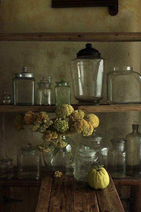 保存瓶 - 植物誌