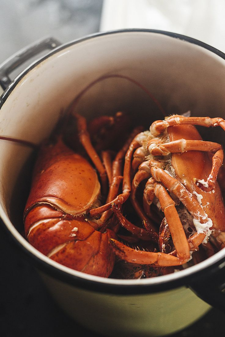 How to prep a lobster feast - get the 101 from our MarkMaker, Chris Fischer