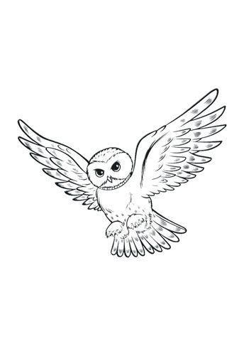 Harry Potter – owl