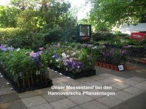 Hannover Stadtp
