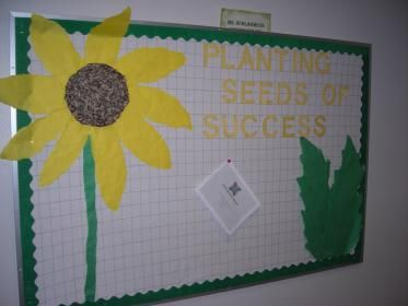 "Sunflower Bulletin Board that Says ""Planting Seeds for Success"" for Primary and Intermediate Resource.  Actual Sunflower Seeds Used to Make the Middle of the Flower. Hung next to ""Green"" Themed Board to promote Consistancy Between the Teachers Courtesy of Ms. Schlagheck"
