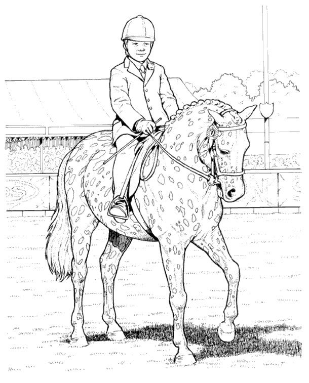 find this pin and more on horse coloring pages - Coloring Pages For Paint Program