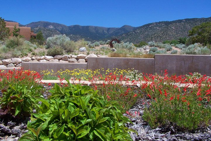 high desert landscaping pictures | High Desert ROA has developed an extensive list of plants that are ...