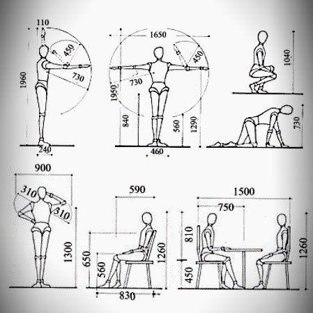 12 mejores im genes de medidas antropometricas en for Medidas ergonomicas del cuerpo humano