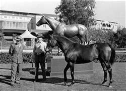 SEABISCUIT A GREAT CHAMPION OF THE CENTURY!!. Posing by his statue at Santa Anita
