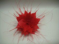 Aster - Red