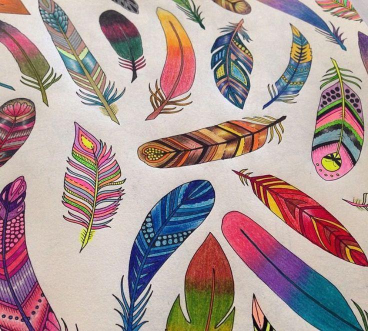 Feathers Enchanted Forest Penas Floresta Encantada Johanna Basford Feather PatternAdult ColoringColoring BooksWatercolor