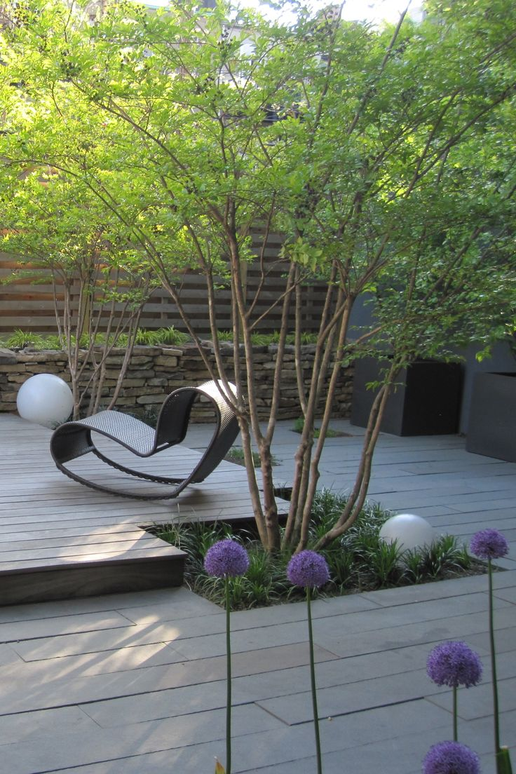 Modern Brooklyn courtyard. Love the level change in the decking that raises the central area to create a heirachy between the sitting area and the surrounding garden. Small garden beds provide enough space for canopy trees to grow and provide dappled shade and a sense of enclosure. Pinned to Garden Design - Courtyards by Darin Bradbury