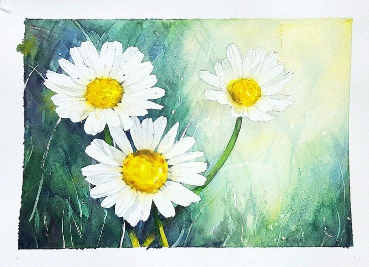 Daisies 2 Artist Lorna Pauls  Watercolors on 1/4 sheet 300g Bockingford watercolour paper  Done February 2017