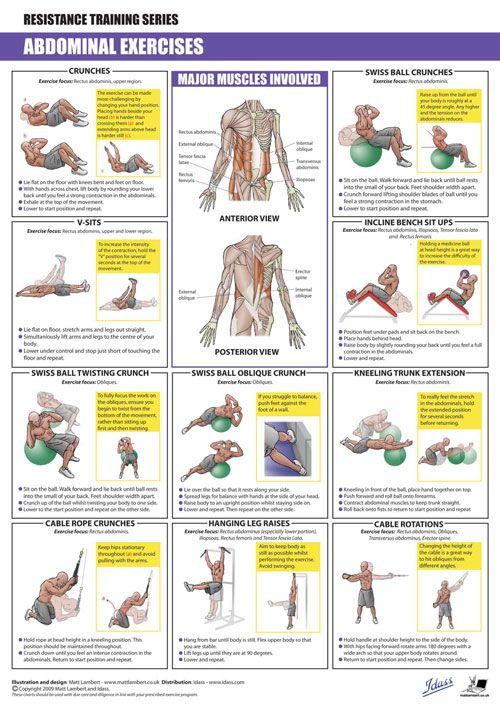 ABDOMINALS Exercises