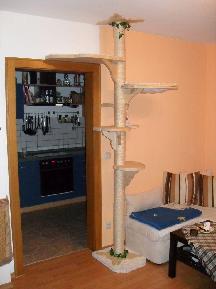 die besten 25 kratzbaum deckenhoch ideen auf pinterest von katzen gekratzte m bel kratzbaum. Black Bedroom Furniture Sets. Home Design Ideas