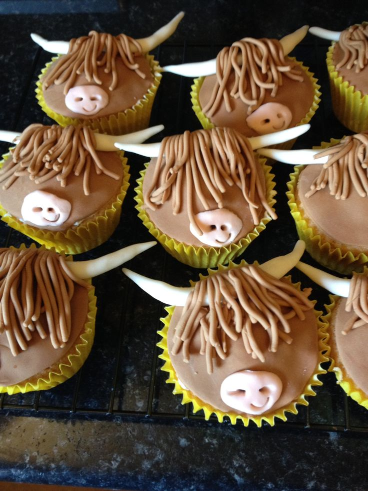 Highland cow cupcakes