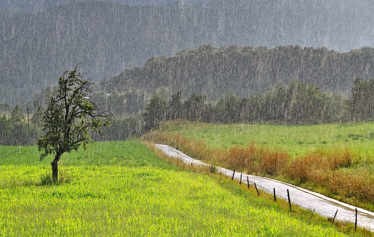 Landscape in the rain.
