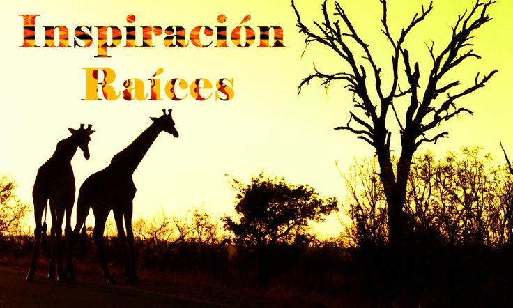 COLECCION 2016 INSPIRACION RAICES