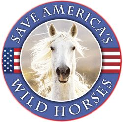 If horse slaughter does begin again in America, the entire American meat supply is threatened with contamination.  The proposed plants are in Tennessee, Oklahoma, Iowa, and Missouri.
