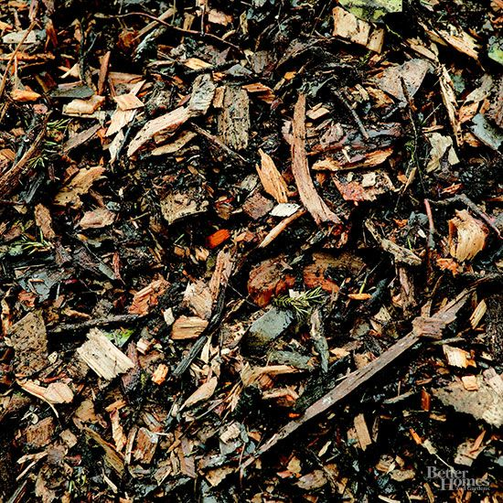 Where To Get Wood Chips ~ Best images about mulch on pinterest gardens leaves