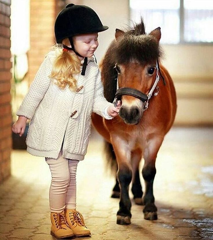 "8,764 Likes, 42 Comments - Horsesplanet (@horsesplanet) on Instagram: ""#horsesplanet"""