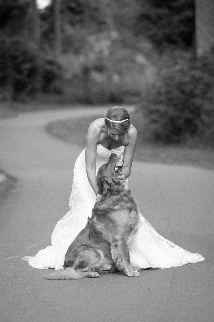 A bride and her dog. This is darling and a sweet keepsake for the bride to have