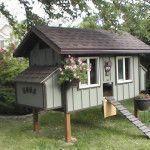 First Class financed chicken coop ideas