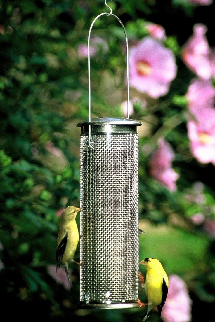 13 best mill creek seed non gmo wild bird seed images on for Mesh feeder ideas