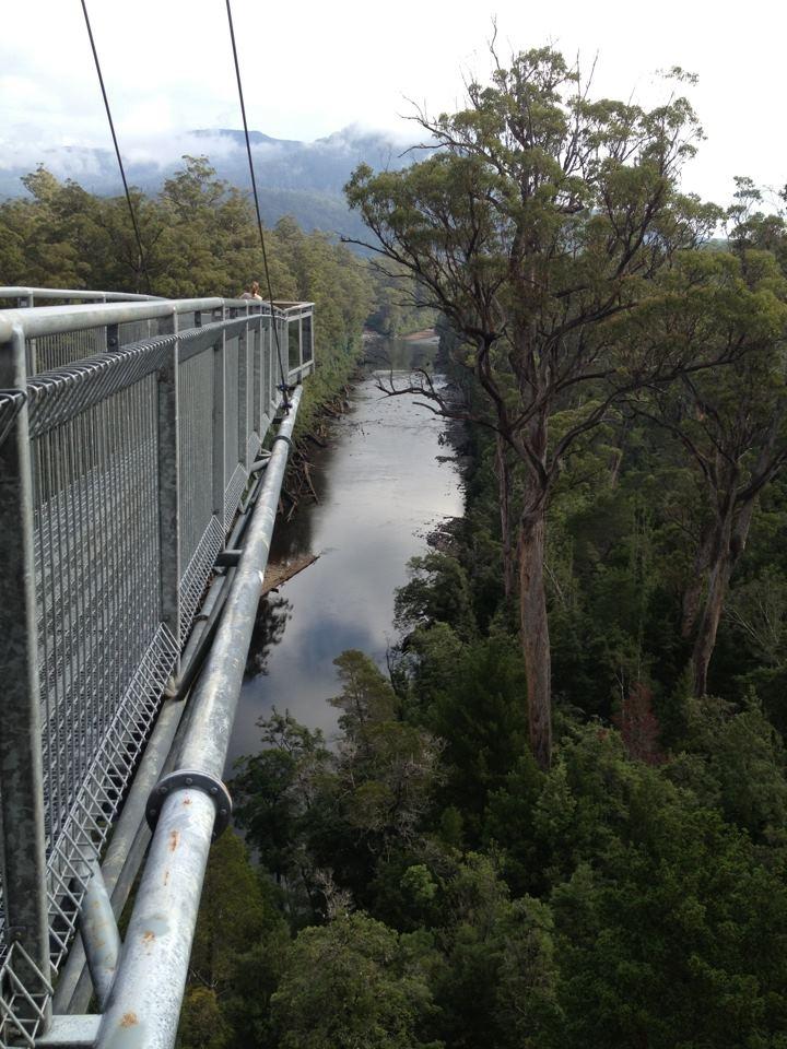 Tahune Airwalk, Tasmania