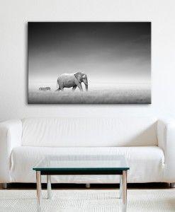 African Elephant and Zebra Canvas Print