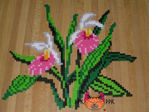 Flower Showy Lady's Slipper perler fuse beads by PPK
