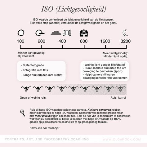 ISO (lichtgevoeligheid)