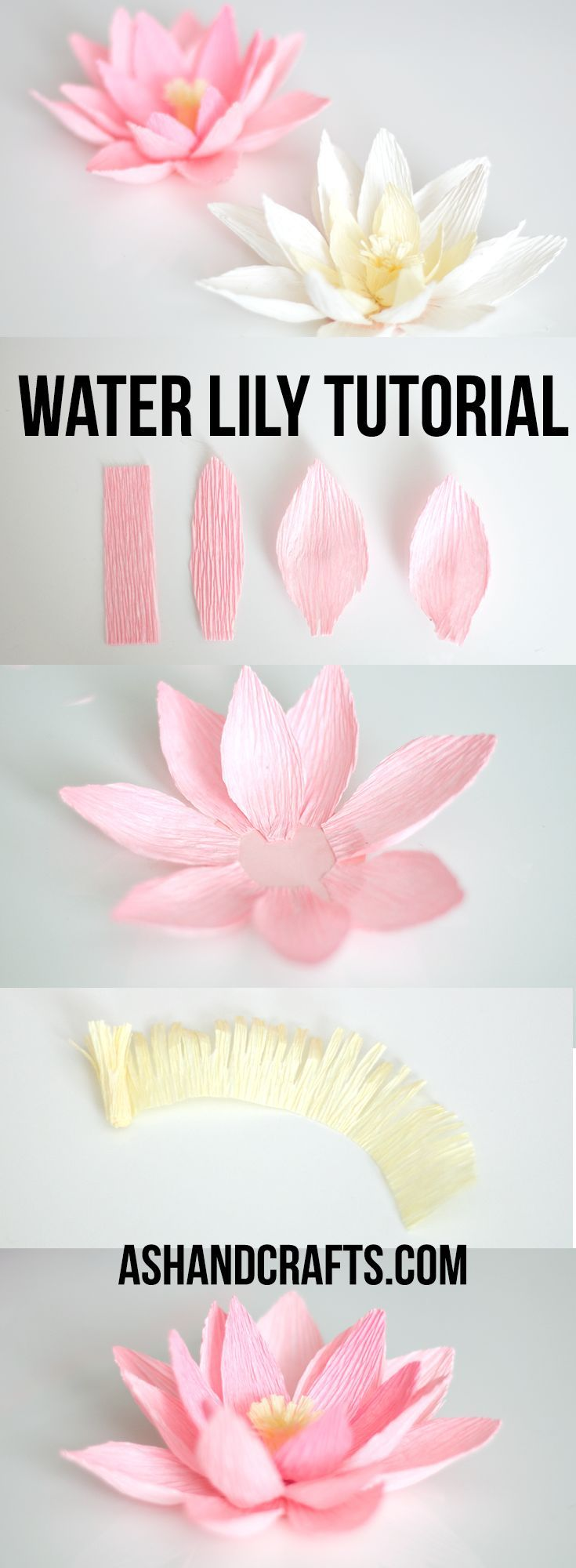 →DIY & Crafts← ♦dAǸ†㉫♦ Crepe Paper Water Lily Tutorial | ashandcrafts.com