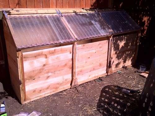 chicken-powered compost bin