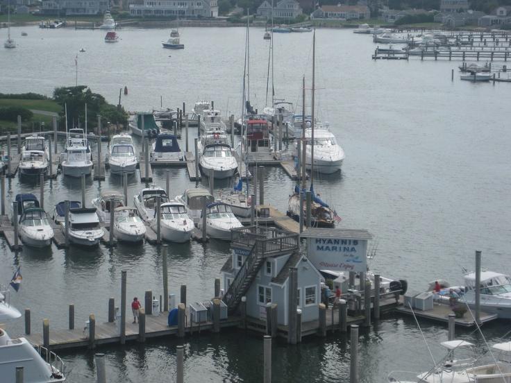 1000 Images About Cape Cod On Pinterest Vineyard Cape