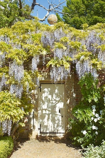 Small Walled Garden Ideas 36 best small gardens images on pinterest small gardens house if have a small garden why not cover the walls in wisteria small garden design workwithnaturefo