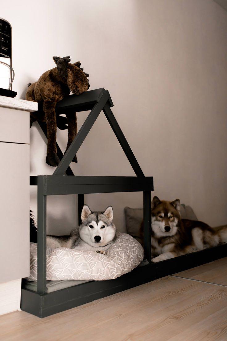 So einfach kann man sich eine moderne Hundehütte für die Wohnung selber bauen!