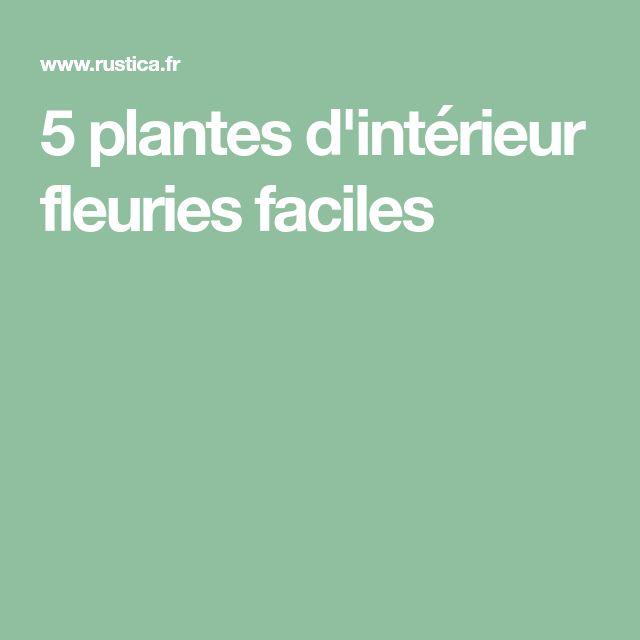 5 plantes d'intérieur fleuries faciles