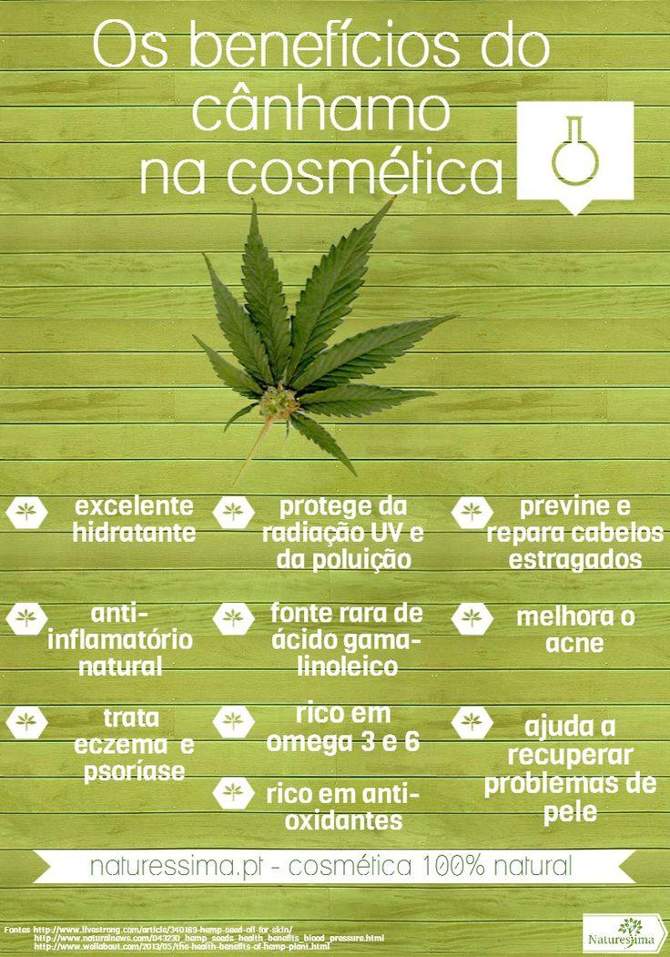 Os benefícios mais importantes do óleo de cânhamo para a cosmética [infographic]