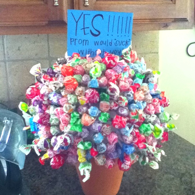 118 best dances askinganswering images on pinterest prom prom would suck without you or i would be a dumb dumb not to go to prom with you ccuart Images