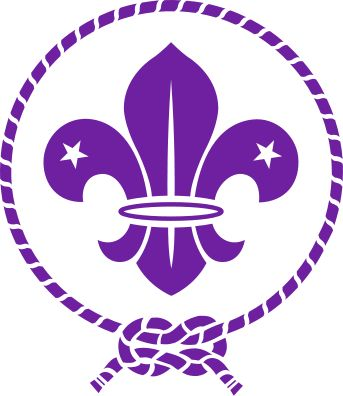 world scouting logo