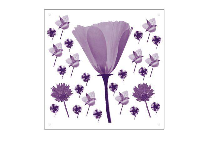 Blumen Art Plexiglass 30 x 30 cm MWL Design NL  von Wohndesign und Accessoires MWL Design NL auf DaWanda.com